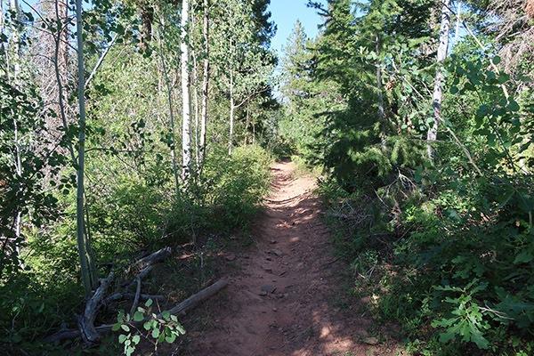 colorado-trail-06