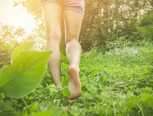Barefoot 1 and Barefoot 2 Forest Bathing